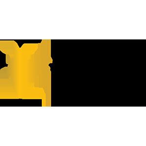 proVISION India